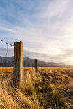 Barbed wired fence on pasture Royalty Free Stock Photo