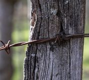 Barbed Wired On Post II royalty free stock photography