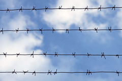 Barbed wires Stock Image