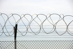 Barbed wires Royalty Free Stock Photo