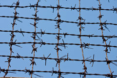 Barbed wires Stock Images