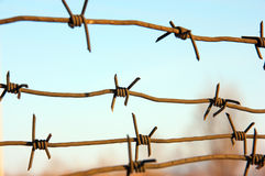 Barbed wires against blue sky. Royalty Free Stock Images