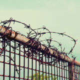 Barbed wires  against blue sky Stock Photography