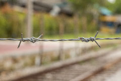 Barbeds wire is safety. Royalty Free Stock Photography