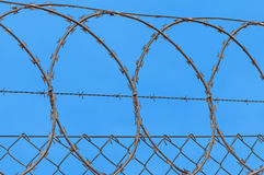 Barbedwire Stock Images