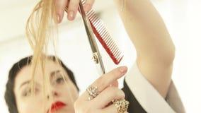 Barbeiro que corta o cabelo fêmea com as tesouras profissionais no salão de beleza do cabeleireiro Feche acima do barbeiro que fa filme
