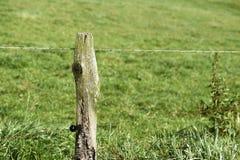 Barbelé dans la route de campagne rurale Images libres de droits