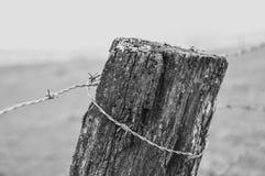 Barbelé sur un poteau en bois images libres de droits