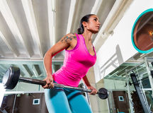 Barbell που κάμπτεται πέρα από την ύπτια γυναίκα πιασιμάτων σειρών workout Στοκ Εικόνα