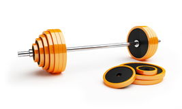 Barbell Stock Image