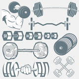 Barbell Collection Royalty Free Stock Image