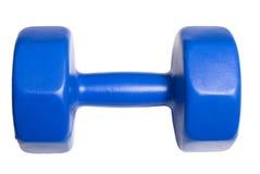 Barbell de 5 kilogrammes Image libre de droits