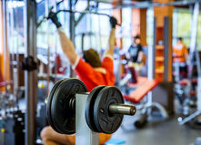 Barbell plates holder in gym Royalty Free Stock Photos
