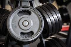 Barbell plates rack Stock Image