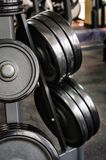 Barbell plates rack Stock Photography