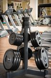 Barbell plates rack in the gym Royalty Free Stock Images