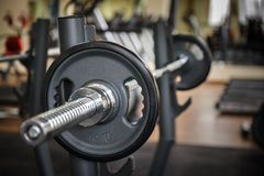 Barbell ready to workout Stock Image