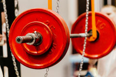 Barbell with red plates. For squats on monolift in gym Royalty Free Stock Photography