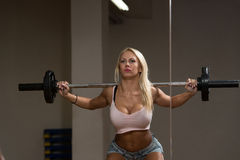 Barbell Squat Workout For Legs Stock Photo