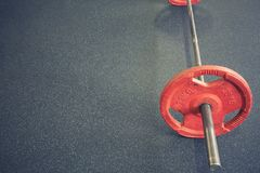 Vivid barbell on floor in gym Royalty Free Stock Photo
