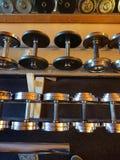 2 3 barbells που κρατούν το βάρος κατάρτισης λίβρας Στοκ εικόνα με δικαίωμα ελεύθερης χρήσης