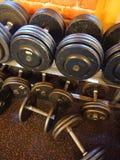 2 3 barbells που κρατούν το βάρος κατάρτισης λίβρας Στοκ Φωτογραφία