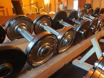 2 3 barbells держа вес тренировки lb Стоковые Фото