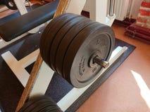 2 3 barbells держа вес тренировки lb Стоковая Фотография RF