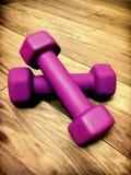 2 3 barbells держа вес тренировки lb Стоковые Изображения RF