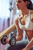 2 3 barbells держа вес тренировки lb Стоковое Фото