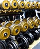 Barbells en un estante en una gimnasia. fotos de archivo