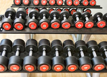 Barbells in gym Royalty Free Stock Photo
