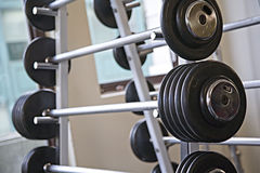 Barbells - gym equipment. Barbells / weights on a rack in a modern gym Royalty Free Stock Photography