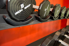 Barbells gym equipment Royalty Free Stock Image