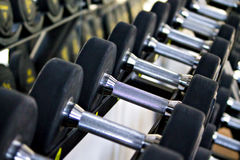 Barbells in the GYM royalty free stock photos