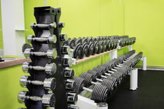 Barbells on Stand. Shiny Barbells on Stand with Green Background and Mirror Royalty Free Stock Image
