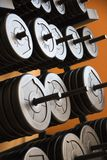Barbells with weights. Royalty Free Stock Image