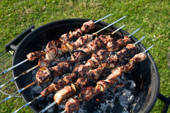 Free Barbeque 3 Royalty Free Stock Photo - 19425165
