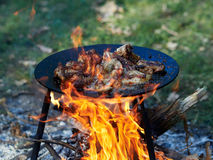 Barbeque. Camping food - barbeque outdoor in summer camp stock image