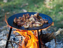 Barbeque. Camping food - barbeque outdoor in summer camp royalty free stock photos