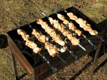 Barbeque chicken on a grill in a forest in the sunlight in summer.