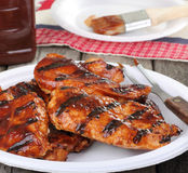 Barbeque Chicken Meal Royalty Free Stock Photo