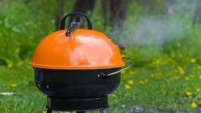 Barbeque grill on a grass stock footage