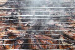 Barbeque Fried On The Bonfire And Coals. A Barbeque meat Fried On The Bonfire And Coals andd smoke Stock Photography
