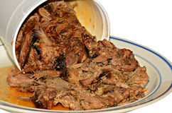 Barbeque Pulled Pork Royalty Free Stock Images