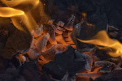 Barbeque. Red hot coal in barbeque Stock Image