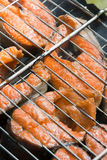Barbeque salmon Stock Photography