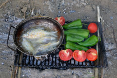 Barbeque on the shore Danube. Barbecue on the island shore after fishing. The fish rolled in cornmeal fried in the pan. Tomatoes and peppers are baked on hot stock photography