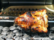 Barbequed Chicken Royalty Free Stock Photo