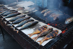 Barbequed fish Royalty Free Stock Photos